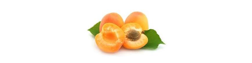Fruta hueso