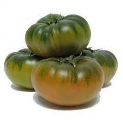 Tomate Raft