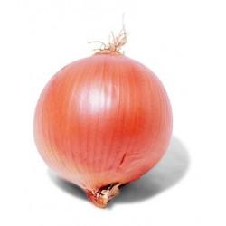 Cebolla Ibicenca