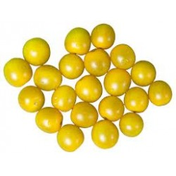 Tomate Cherry Amarillo Bandeja