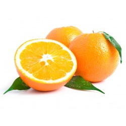 Naranja Zumo Importación