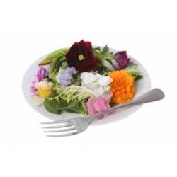 Flores Nacional Bandeja
