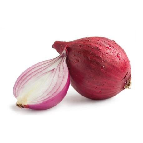 Cebolla Roja
